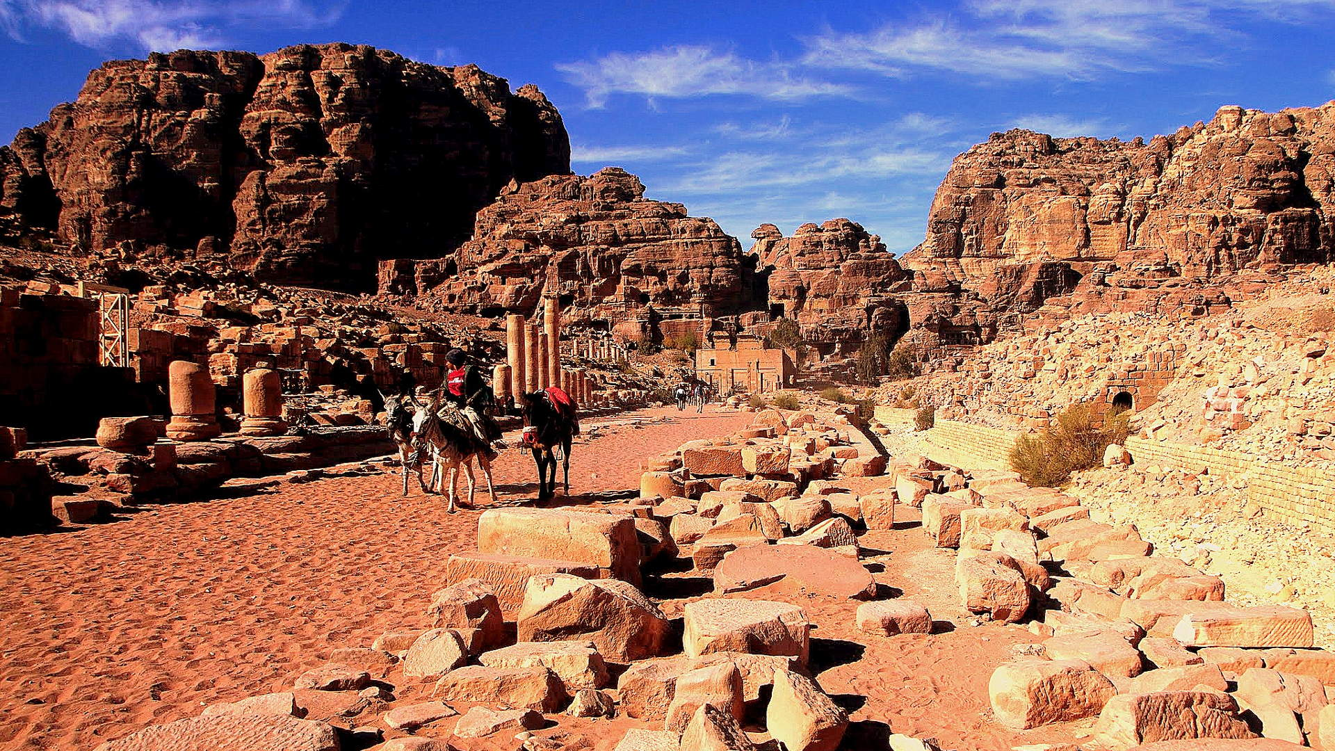 Dead Sea to Petra Tour